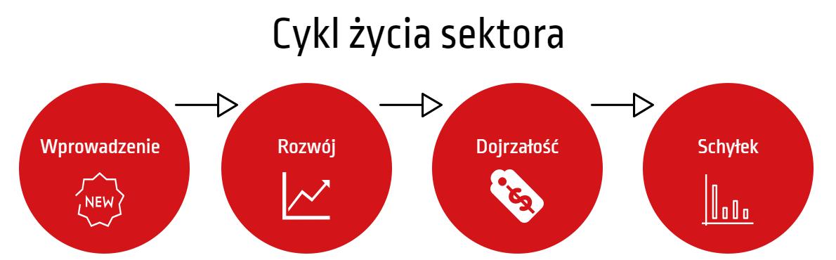 cykl życia sektora